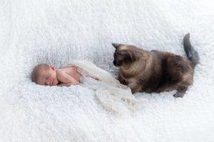 babybauch babybilder profi fotograf zweibruecken 38